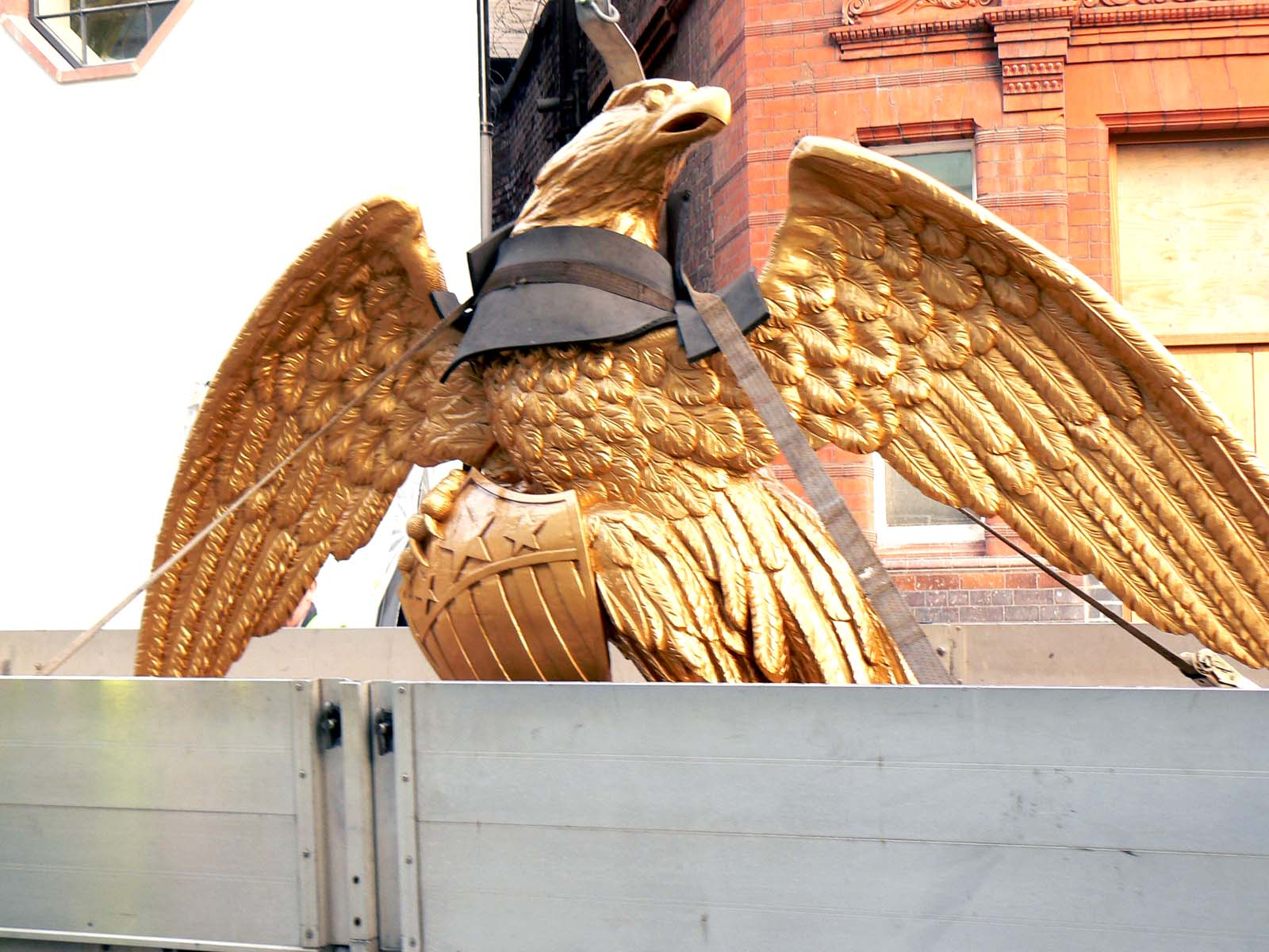 American eagle ready to be lifted to the shelf. (281508 bytes)